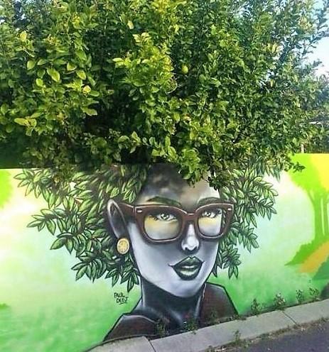 Superbes fresques murales végétalisées