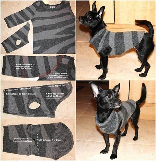 astuces faire un pull pour chien. Black Bedroom Furniture Sets. Home Design Ideas