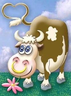 Et aux vaches, vous y pensez à nos amies les vaches ?