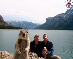 Humour : images drôles et funny !