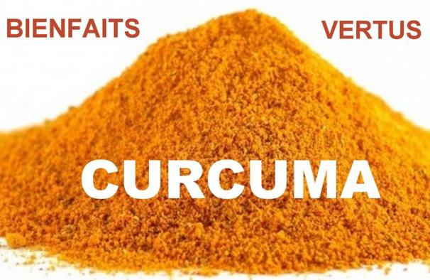 Le Curcuma : antioxydant, anti-inflammatoire, anti-tumoral.