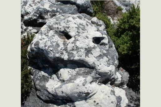 l'homme de pierre..