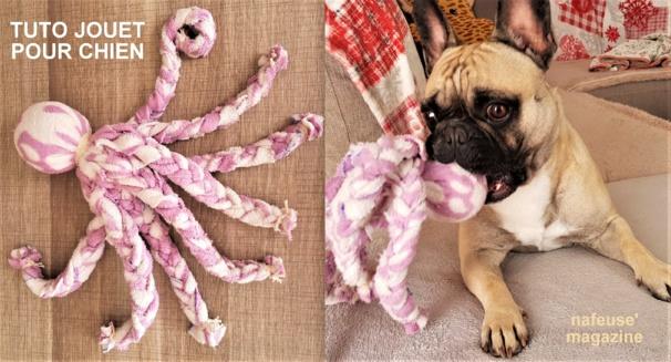Tutoriel faire un jouet pour chien