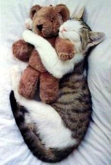 Je dors jamais sans mon doudou !