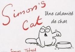 Humour : vidéo du chat qui réveille son maître !