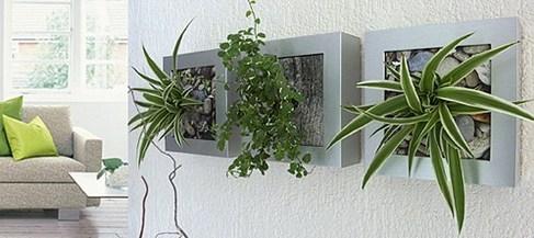 Idée déco : le tableau végétal !