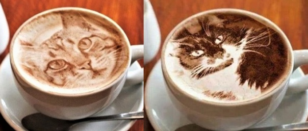 Cafés crème insolites !