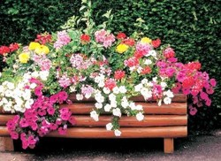 De jolies jardinières pour décorer vos jardins