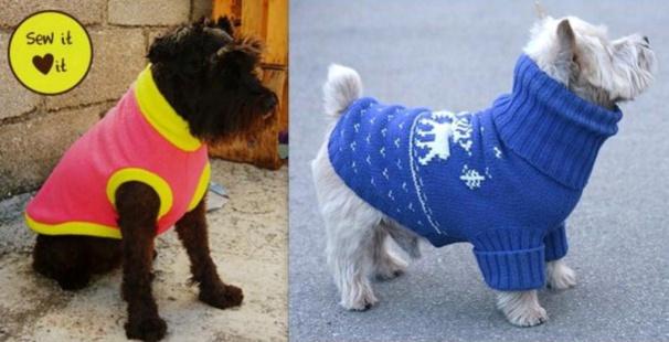 comment coudre un habit pour chien
