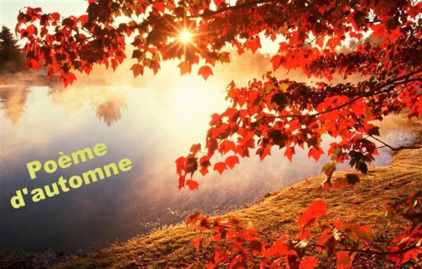 Trésors d'automne...poésie