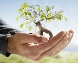 Consommer autrement : achetez Bio, local et responsable