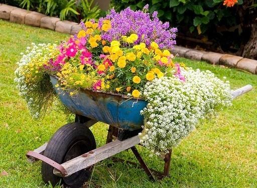 Les Brouettes fleuries du jardin !
