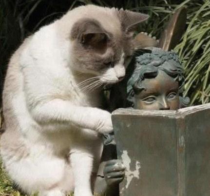 """""""attends voir ! ouais, j'l'ai déjà lu c'lui là !"""