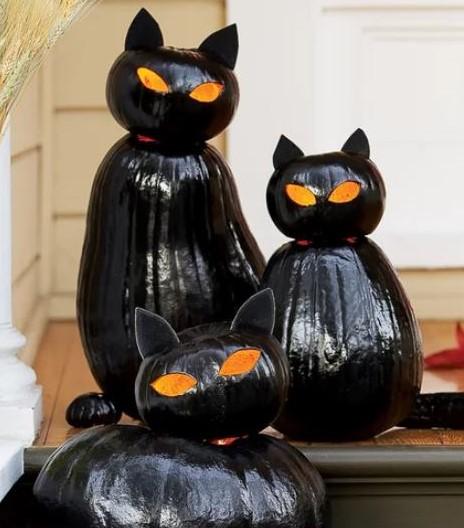 Chats noirs en potirons !