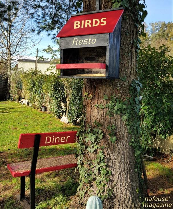 Mangeoire pour nourrir les oiseaux