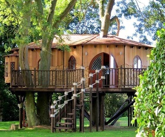 Belles Maisons en bois dans les arbres