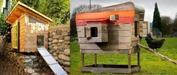 avoir des poules dans son jardin. Black Bedroom Furniture Sets. Home Design Ideas