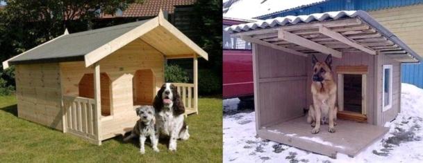 Des niches pour chien, originales et insolites !