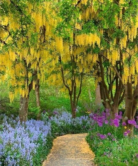 De superbes allées de jardin !