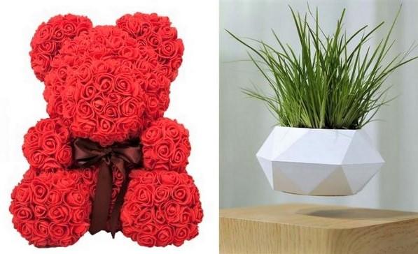 Idées cadeau : Ours roses rouge et plante en lévitation