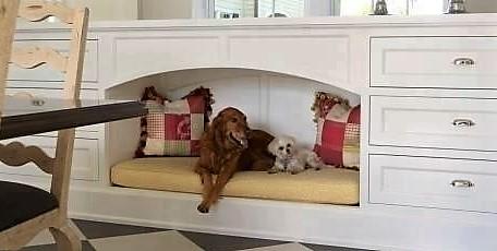 id es pour faire niche et couchette d 39 int rieur pour animaux domestiques. Black Bedroom Furniture Sets. Home Design Ideas