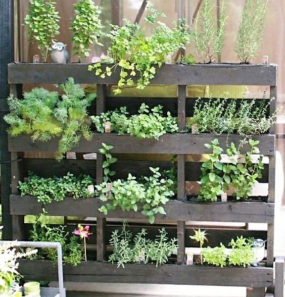 Recycler une palette en jardini re pour le jardin page 2 - Planter des herbes aromatiques en jardiniere ...