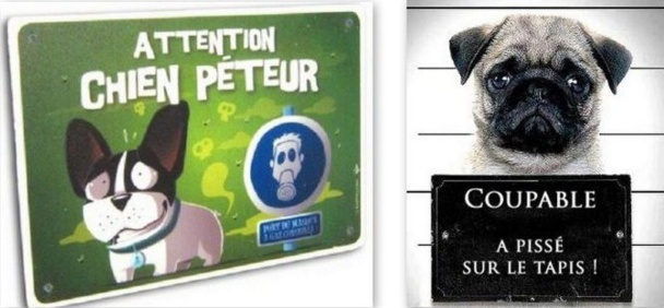 Pancartes chiens drôles et amusantes