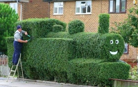 Au jardin on s'amuse à sculpter les végétaux