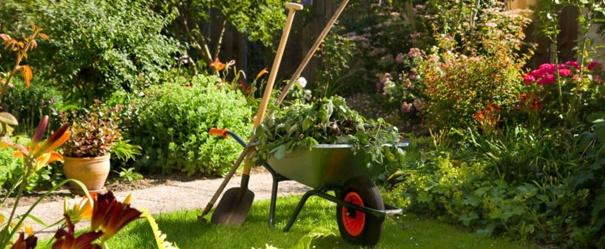 Le printemps est l prenez soin de votre jardin for Les meilleurs sites de jardinage