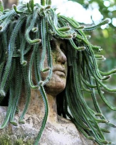Décorations statues à têtes végétalisées