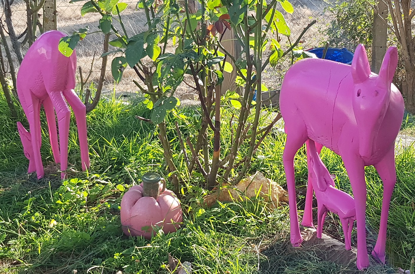 Idée déco jardin : biches roses