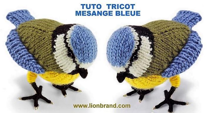 Tutoriel tricot mésange bleue