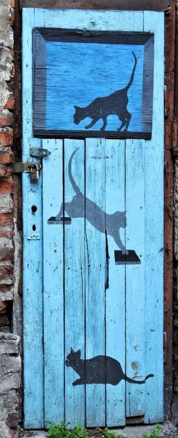 Chats peintures sur portes