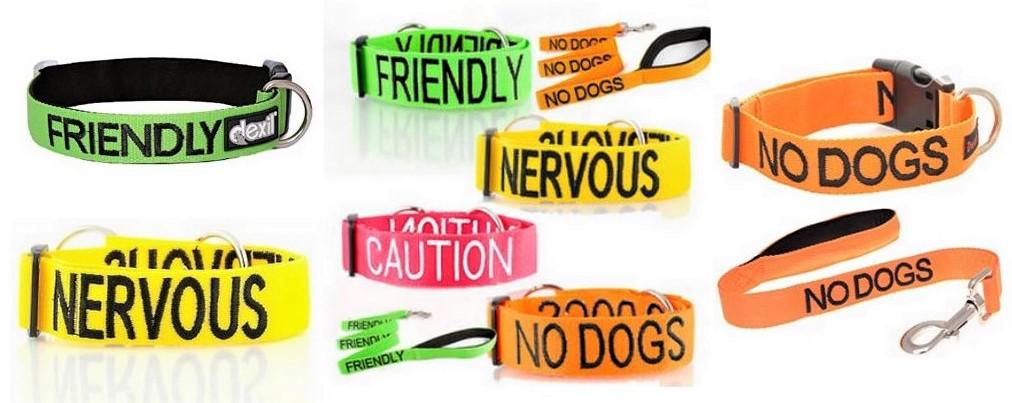 Code couleur pour chien, collier, laisse et ruban.