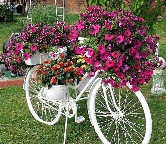 Les vélos fleuris au jardin !