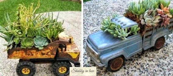 Les plantes succulentes subliment le jardin !