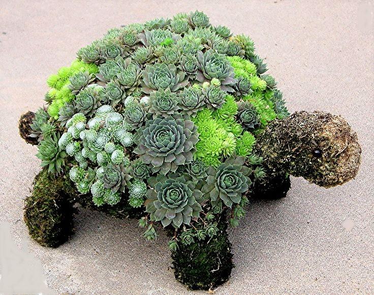 Sculptures végétales animales