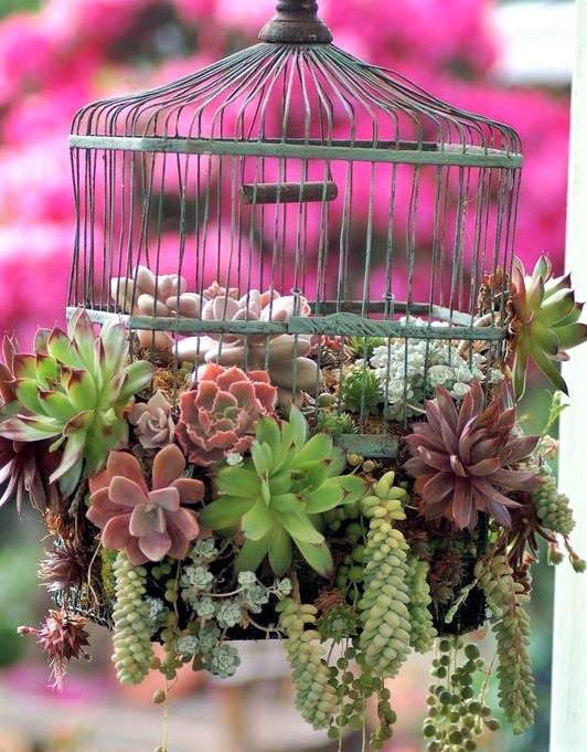 Idées déco et recyclage cages à oiseaux