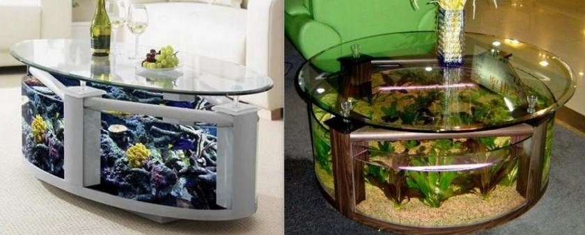 Tables basses insolites et originales - Table basse aquarium design ...