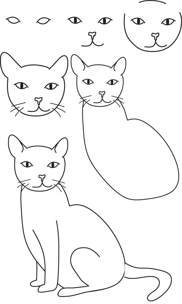 Tutoriels dessiner un chat