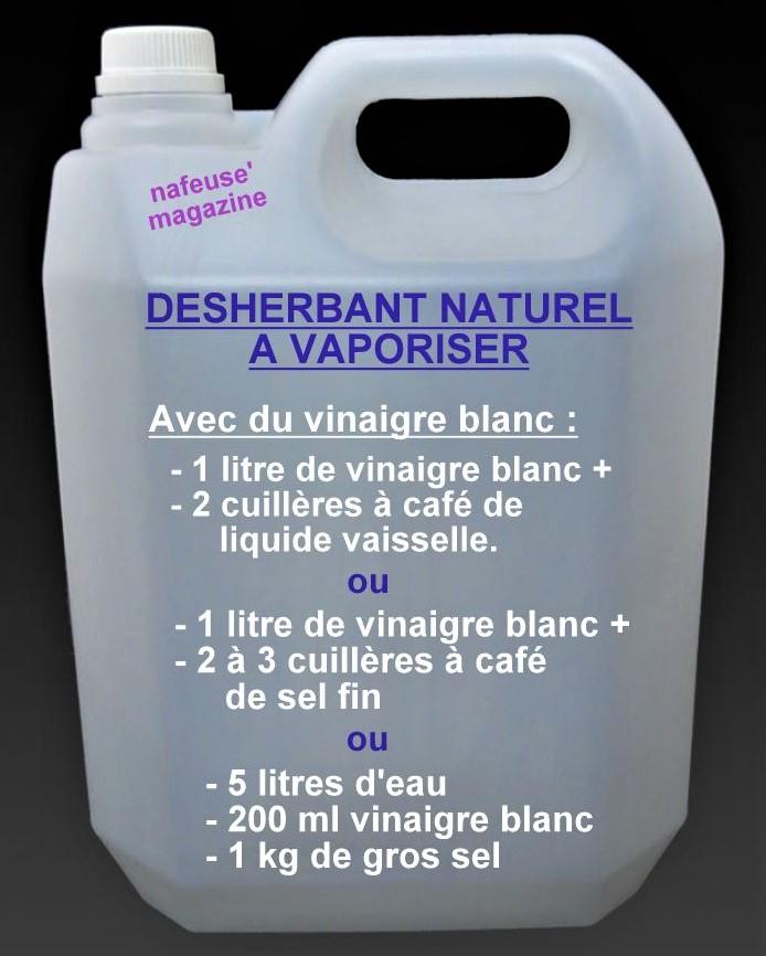 faire son dsherbant naturel pour le jardin - Comment Faire Du Desherbant Avec Du Vinaigre Blanc