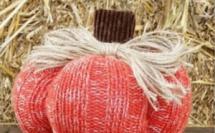 Faire une citrouille avec un pull en laine