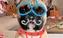 déguisement virtuel pour Louna...lol !