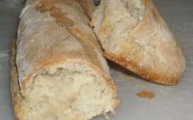 Pain quotidien, quel pain choisir pour votre santé ?