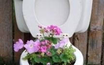 Les décos insolites et créatives au jardin !