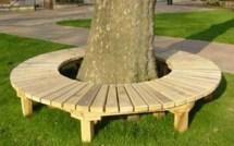 Comment habiller un arbre avec un banc circulaire, les tutos