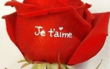 Offrez des fleurs toute l'année aux personnes que vous aimez !