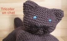 Tutoriel vidéo tricoter un chat