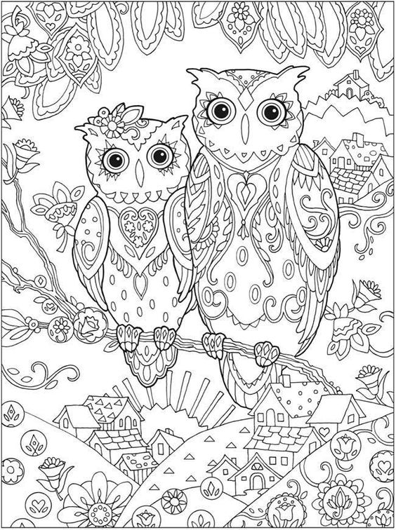 coloriage anti stress chouette